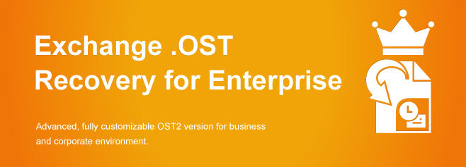 Advanced, fully customizable OST2 version for business and corporate environment.